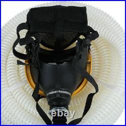 Full Face fresh Air Fed Gas Respirator Mask for Breathing System 110-240V in USA